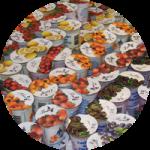 yaourts-fruits-enilbio
